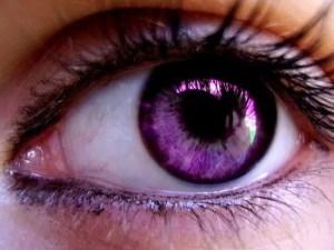 -----eye-violet-bonitas-keti-eyes-m